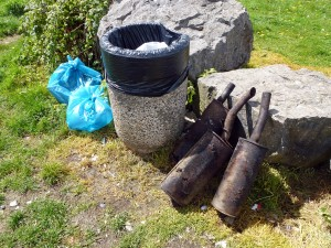 White Rock Fire litter pick